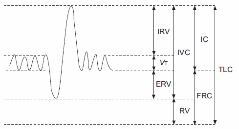 "From ""Standardisation of the measurements of lung volumes"", pg 512"