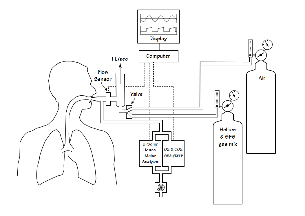 The Dual Tracer Gas Single Breath Washout Dtg Sbw And Ventilation