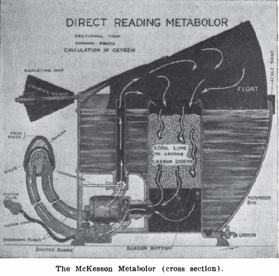 McKesson_Metabolor_1921_Diagram