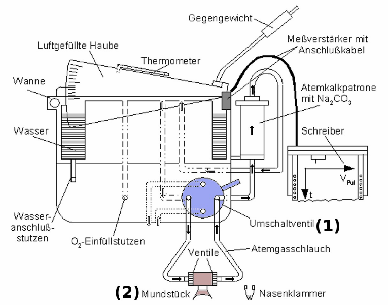 Spirometer_Krogh_Diagram_2010