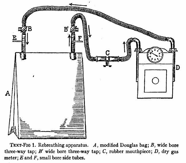 Douglas_Bag_Rebreathing_CO2_1925