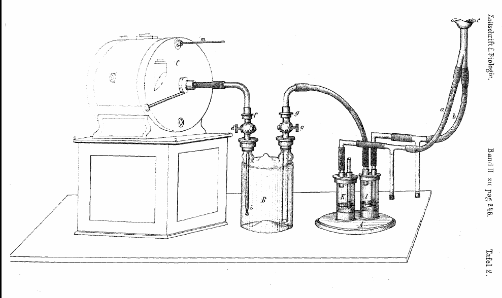 Basal_Metabolism_Apparatus_1866_Pettenkofer_&_Voit
