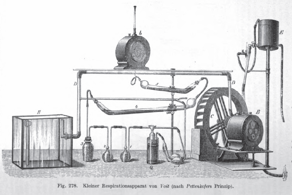 Respiration_Apparatus_Pettenkofer_Voit_1860s