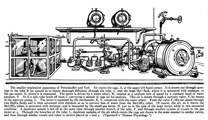 Respiration_Apparatus_Pettenkofer_Voit_1917