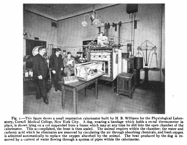 Respiration_Apparatus_Williams_1917
