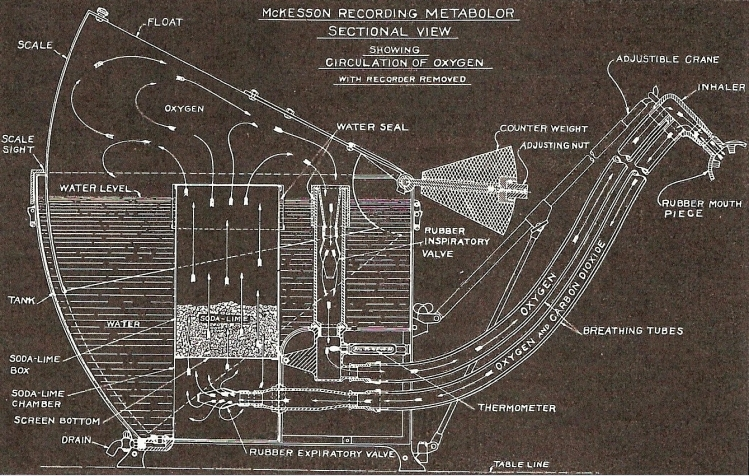 McKesson_Metabolor_circa_1925_blueprint